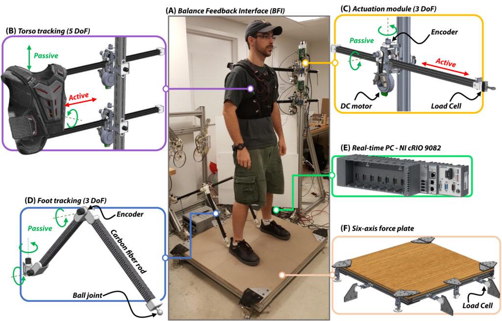 Bipedal robot interface